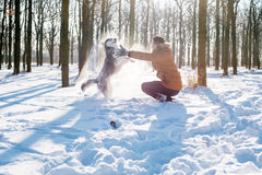 Man playing with siberian husky dog in snowy park Royalty Free Stock Image