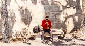 A man is playing a trumpet on the Seine embankment. Paris. France Stock Photography