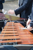 Man playing vibraphon. Musician playing xylophone vibraphone close-up Royalty Free Stock Photo