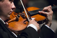 Man playing the violin at the Vienna Ball. In Bucharest Royalty Free Stock Photography