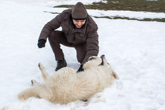 Man playing with a white dog in winter royalty free stock photography