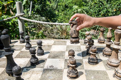 A man playing wooden chess game in the forests Stock Image