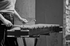 Man playing xylophone. Man playing a xylophone or glockenspiel with mallets or light hammers in black and white Royalty Free Stock Photography
