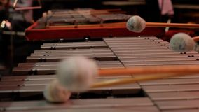 Man playing xylophone with nice drumstick. Human hands playing a glockenspiel close-up. P Stock Image