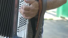 Man plays the accordion push button music cheerful stock video