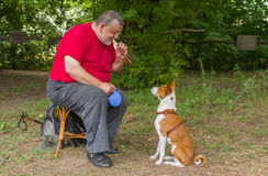 Man plays his basenji dog a melody with fife Stock Photos