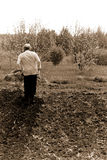 A man ploughing vegetable garden - sepia. Traditional farmig Russia, the urals Royalty Free Stock Photography