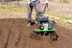 A man plowing the land with a motor-block, preparing the land for planting potatoes.  Stock Photos