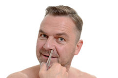 Man plucking his nose hairs with tweezers Royalty Free Stock Images