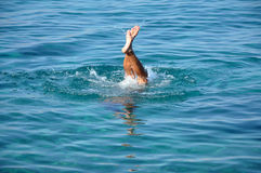 Man plunging in sea water Stock Photography