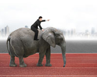 Man with pointing finger gesture riding on walking elephant Royalty Free Stock Photo