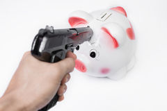 Man pointing a gun at a piggy bank no white background.  Stock Images