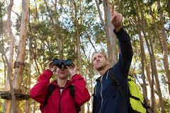 Man pointing out while woman using binoculars. In the forest Stock Photos
