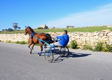 Man on pony and trap, Malta. Man travelling in a pony and trap along a country road, Dingli, Malta, Europe Stock Image