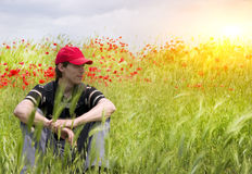 Man on Poppy meadow Stock Photography