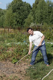 Man poses with rake Stock Photography