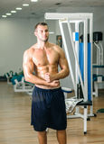 Man posing in gym. Young adult man posing in gym Royalty Free Stock Image