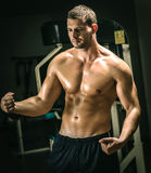 Man posing in gym. Young adult man posing in gym Stock Image