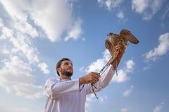 Man posing with his trained falcon. Abu Dhabi, UAE - Dec 15, 2017: Man in a traditional emirati dress proudly posing with his trained show falcon Stock Image
