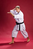 Man posing for karate royalty free stock images