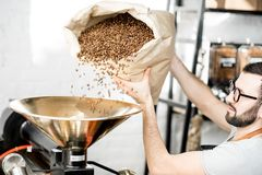 Pouring coffee into the roaster machine. Man pouring coffee beans into the roaster machine indoors stock image