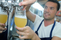 Man pouring glass lager from barrel Royalty Free Stock Photo