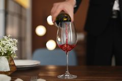 Man pouring wine into glass. On table Royalty Free Stock Images