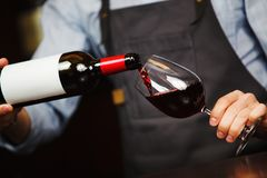 Man pouring wine into wineglass, male hand holding bottle. Of red expensive alcoholic beverage, closeup photo Stock Image