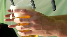 Man pours beer in two plastic glasses. Close up. Street food festival concept. 4k stock video