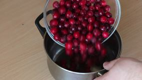 A man pours frozen cranberries into a pan for making mashed potatoes. For the preparation of marshmallow. A man pours frozen cranberries into a pan for making stock footage