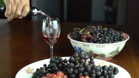 Man pours red wine into wine glass on wooden table with freshly harvested grapes.
