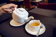 Man pours tea from a white teapot in   Cup Royalty Free Stock Photography