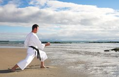Man practicing Karate Royalty Free Stock Photography