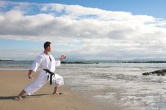 Man practicing Karate Stock Photography