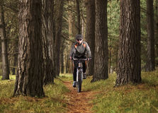 Man practicing mountain biking Stock Image