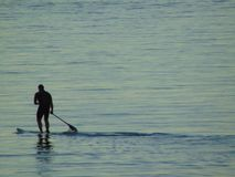 Man practicing paddle surfing in the sea stock image