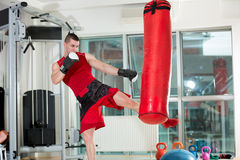 Man practicing some kicks with a punching bag. Fighter practicing some kicks with a punching bag at a gym royalty free stock photography