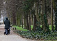 Man with a pram in the park stock photos