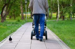 Man with a pram in the park for a walk royalty free stock photography