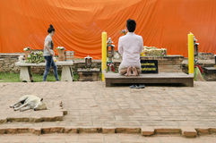 Man praying at buddhist shrine ayutthaya thailand Royalty Free Stock Image