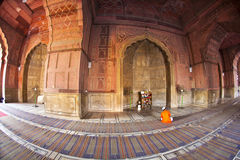 Man praying in the Jama Masjid Stock Images