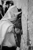 Man praying at the wailing wall, in black and white Stock Photography