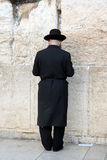 A Man Praying at the Western Wall Stock Images