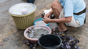 Man prepare shellfish for sale in the local market Royalty Free Stock Photos