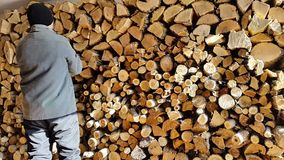 Man prepares firewood stack.winter and background stack stock footage