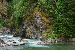 Man prepares to fish in British Columbia, Canada Royalty Free Stock Photos