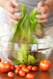 Man preparing salad Stock Images