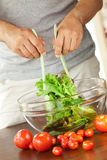 Man preparing salad Royalty Free Stock Photos