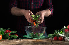 Man preparing salad with fresh vegetables on wooden table Stock Images