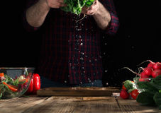Man preparing salad of fresh vegetables on wooden table. Man preparing a salad of fresh vegetables on a wooden table. Tasty and healthy food Stock Images